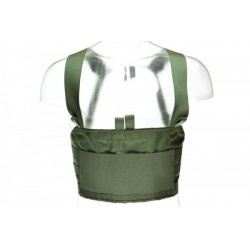 BlueForce Gear / Ten Speed M4 Chest Rig